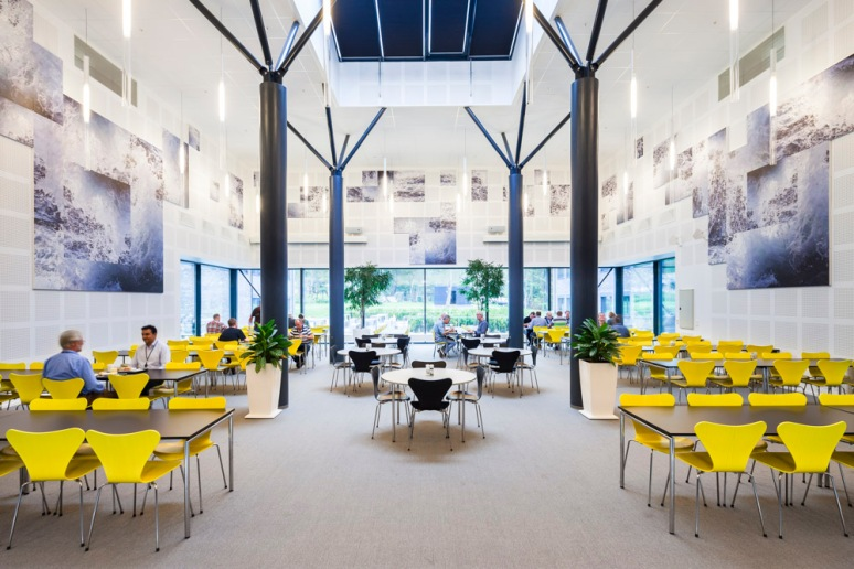 Introducing organic structural elements really humanise this canteen.