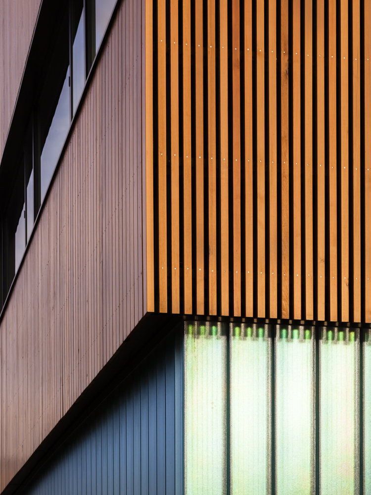 Detail of wood cladding and glass wall